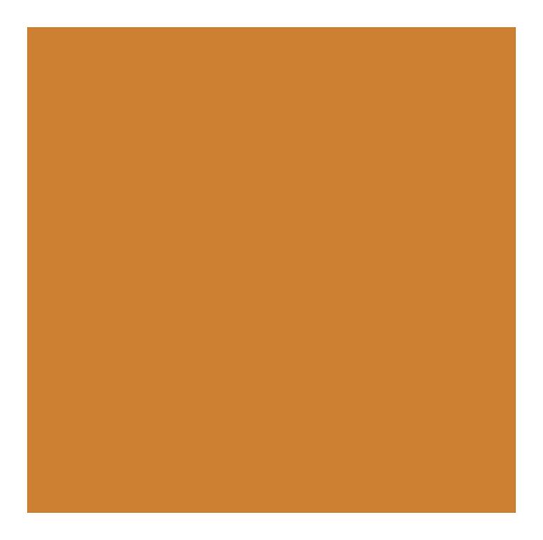 partners-bronze-2